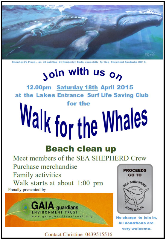 Whale walk poster 2105 001 3